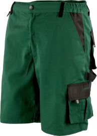 Albatros Allround Green Shorts 286240